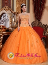Apliques and Sash Sweetheart Tulle Embroidery Decorate Quinceanera Dress In Tela Honduras  Style QDZY662FOR