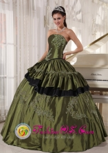 Customize Olive Green Taffeta Strapless Appliques beading 2013 Choluteca Honduras Quinceanera Dresses Party Wholesale Style PDZY517FOR