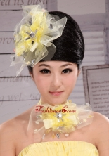 Rhinestones Lovely Tulle Hairpins Birdcage Veils XTH099FOR
