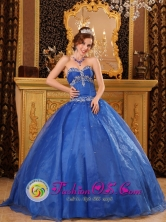 Affordable Blue Organza Quinceanera Dress with Appliques For 2013 Lujan de Cuyo  Argentina Sweetheart  Style QDZY086FOR