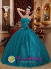 Hand Made Flowers Teal Unique Quinceanera Dress For 2013 Rafael Castillo Argentina With Sweetheart In Soecial Design  Style QDZY699FOR