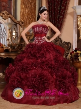 Appliques Burgundy Strapless Organza 2013 Puerto Rico Colombia Rolling Flower  Quinceanera Dresses Style QDZY697FOR