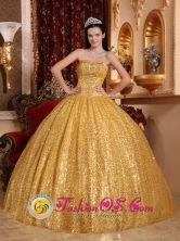 Gold Paillette Ball Gown and Appliques Strapless Bodice For 2013 Paz de Ariporo Colombia Quinceanera Style QDZY045FOR